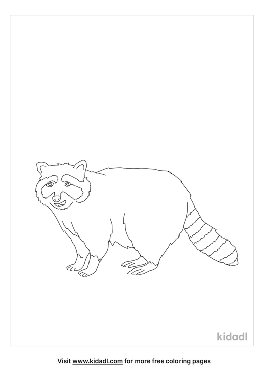 smiling-raccoon-coloring-page.png