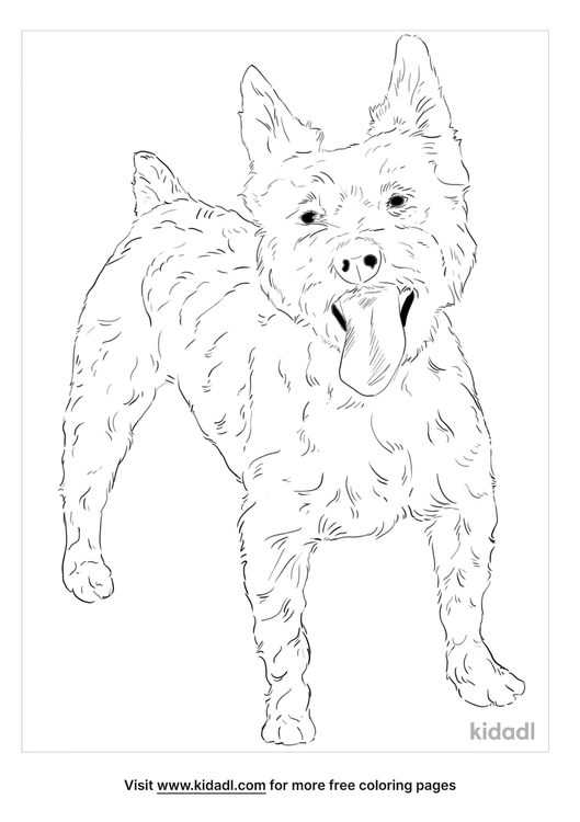snorkie-coloring-page