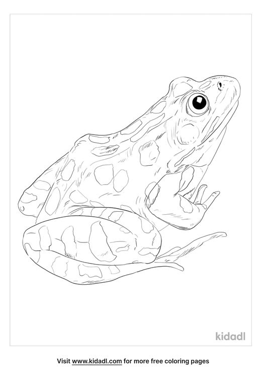 southern-leopard-frog-coloring-page