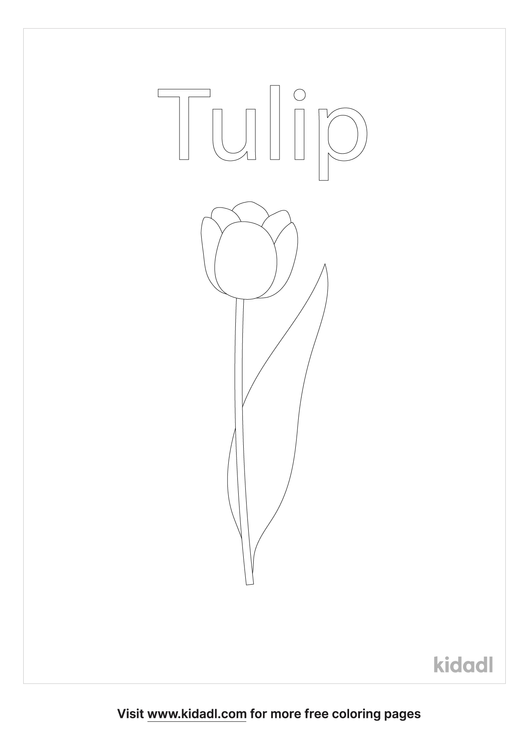 tulip-coloring-page