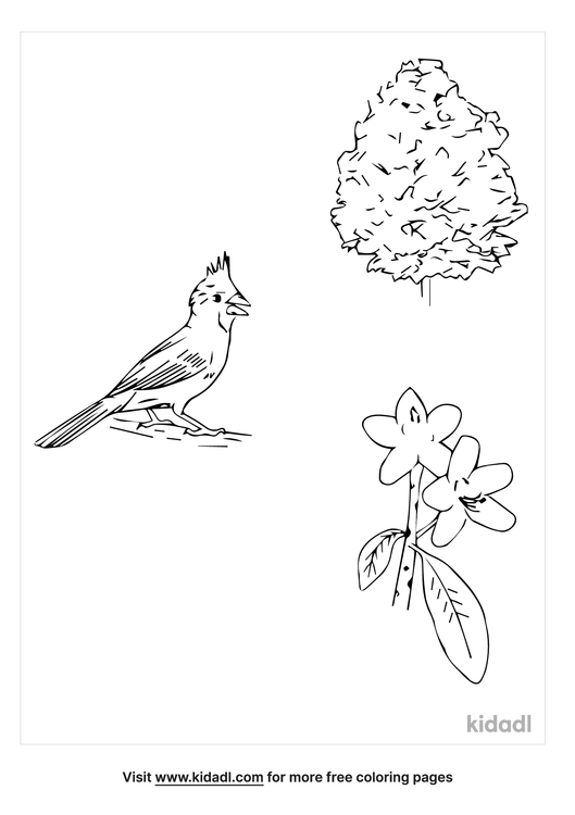 west-virginia-state-symbols-coloring-page.png