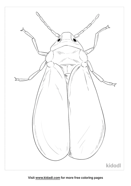 whitefly-coloring-page