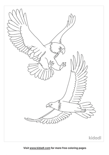 2-eagles-colouring-page.png