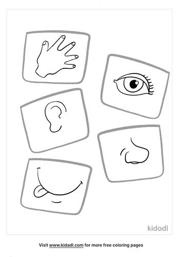 5 senses coloring page_4_lg.png