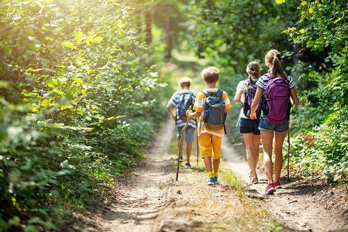 Family walks