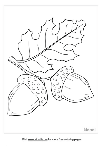 Acorn coloring page-5-lg.png