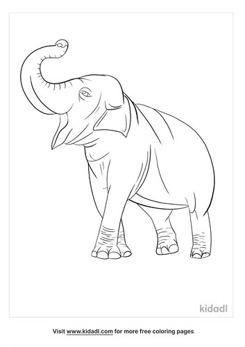 Animals coloring pages_4_lg.png
