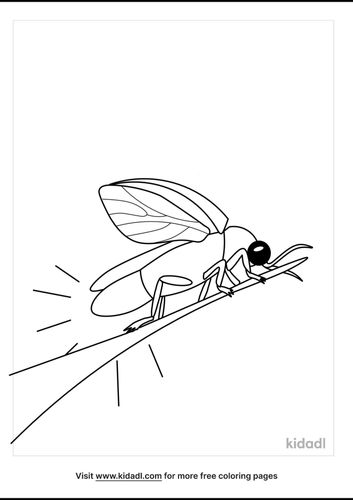 Fireflies-coloring-pages-1-lg.png
