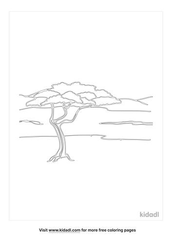 acacia tree-coloring-pages-1-lg.png