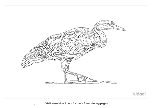 african-finfoot-coloring-page