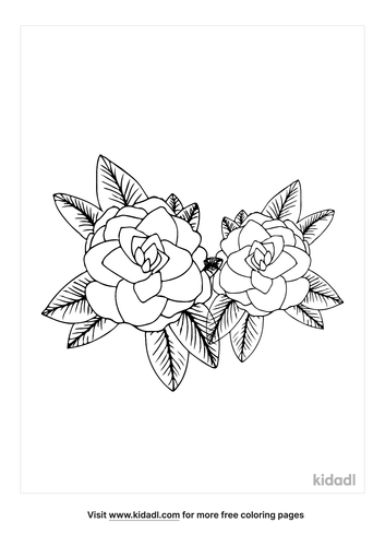 alabama-state-flower-coloring page-1-lg.png