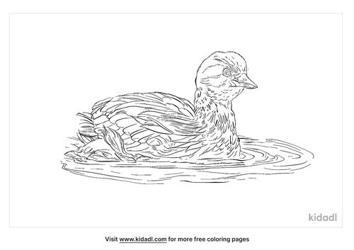 alaotra-grebe-coloring-page