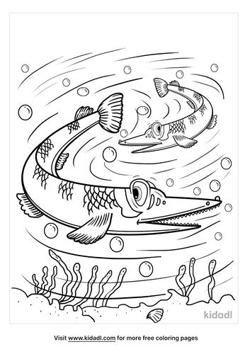 alligator gar coloring page-5-lg.png