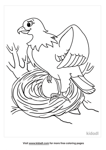 american bald eagle coloring page-2-lg.png