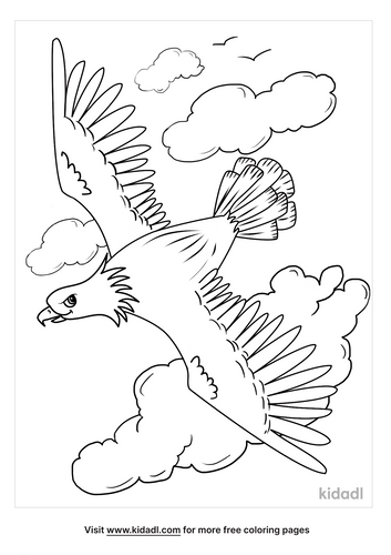american bald eagle coloring page-3-lg.png