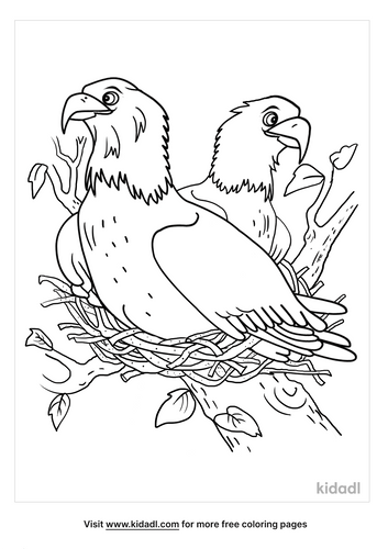 american bald eagle coloring page-5-lg.png