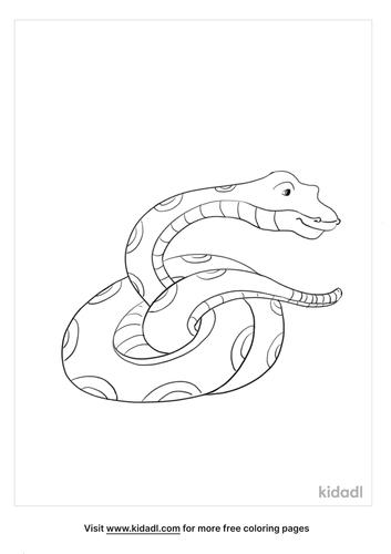anaconda coloring page_2_lg.png