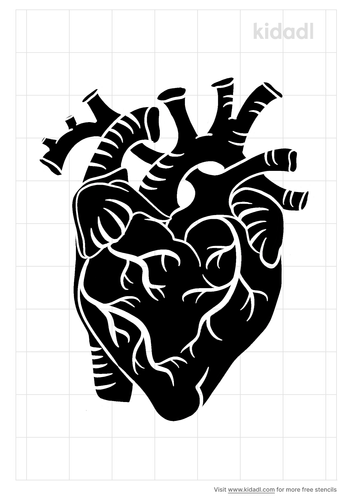 anatomical-heart-stencil.png
