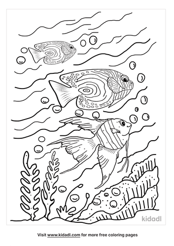angel fish coloring page-5-lg.png