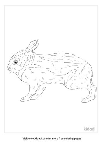 annamite-striped-rabbit-coloring-page