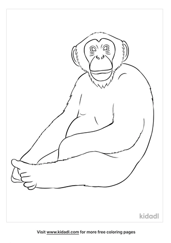 ape coloring page-3-lg.png
