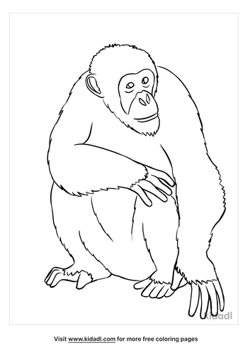 ape coloring page-4-lg.png