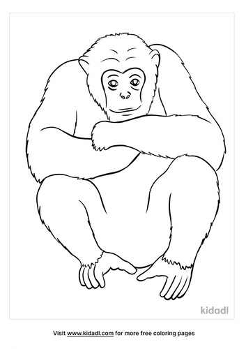 ape coloring page-5-lg.png