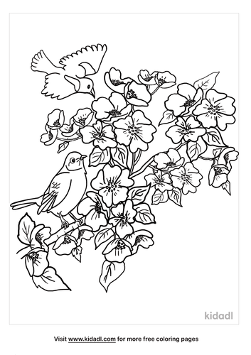 apple blossom coloring page-2-lg.png