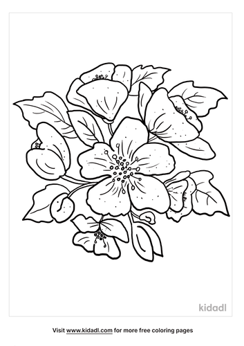 apple blossom coloring page-4-lg.png