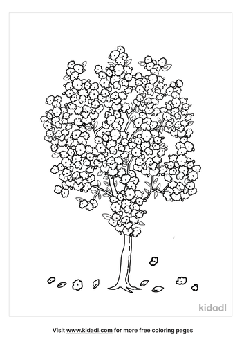 apple blossom coloring page-5-lg.png