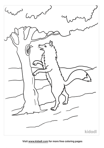 arctic fox coloring page-2-lg.png