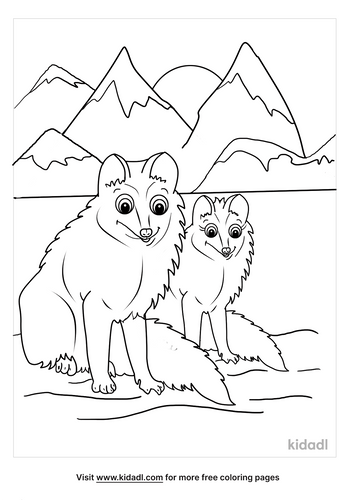 arctic fox coloring page-3-lg.png