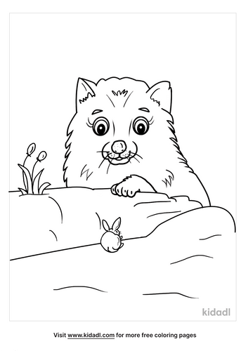 arctic fox coloring page-5-lg.png