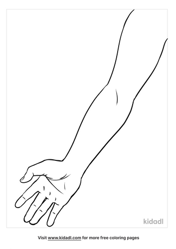 arm coloring page-4-lg.png