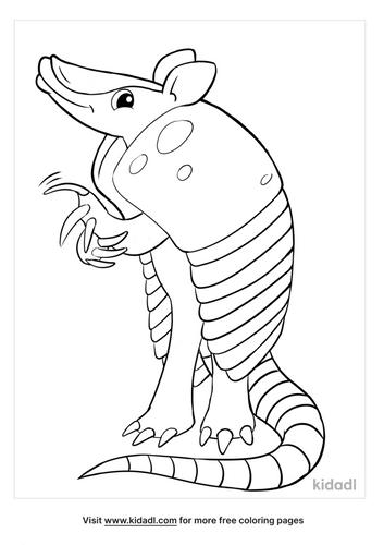 armadillo coloring page-2-lg.png