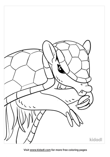 armadillo coloring page-3-lg.png