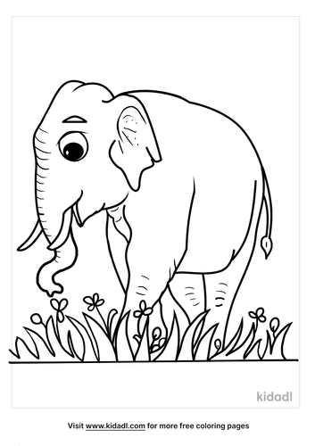 asian elephant coloring page-3-lg.png