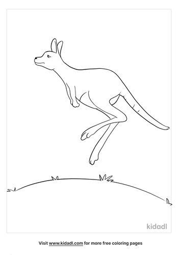 australian animals coloring page_2_lg.png