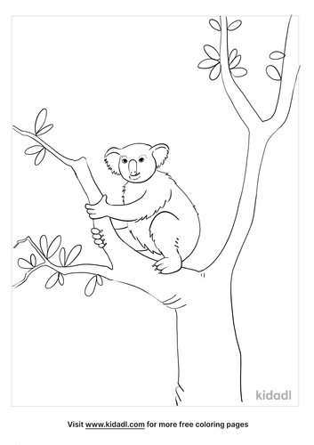 australian animals coloring page_5_lg.png