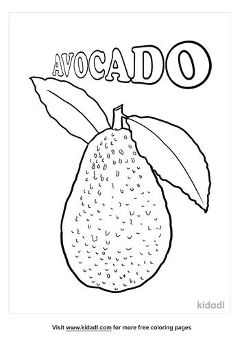avocado coloring page-1-lg.png