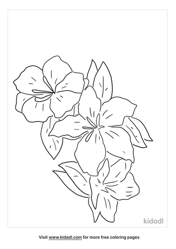 azaleas-coloring-page.png