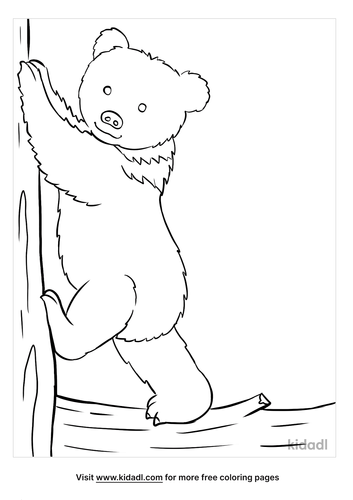 baby bear coloring page-2-lg.png