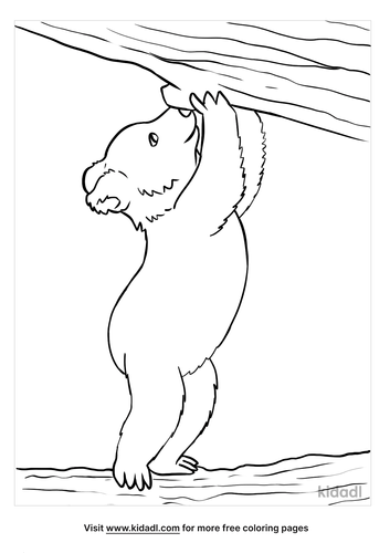 baby bear coloring page-4-lg.png