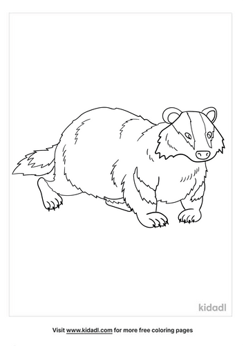 badger coloring page-2-lg.png