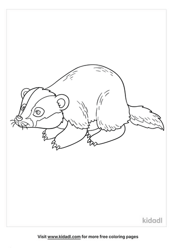 badger coloring page-5-lg.png