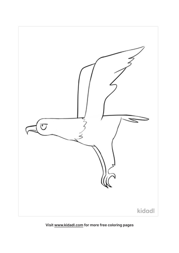 bald eagle colouring pages-3-lg.png