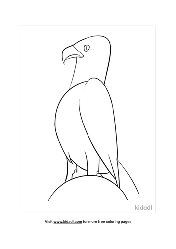 bald eagle colouring pages-5-lg.png