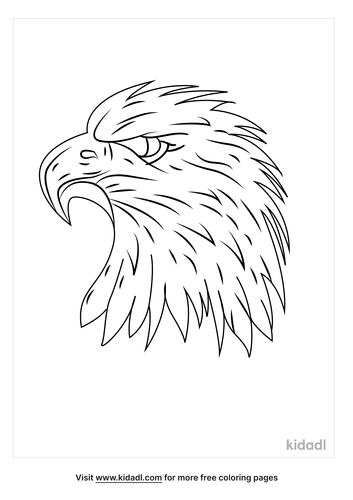 bald-eagle-head-coloring-page.png