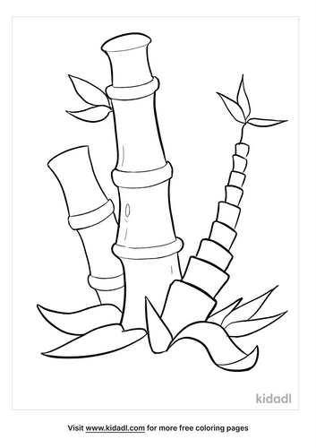 bamboo coloring page-4-lg.png
