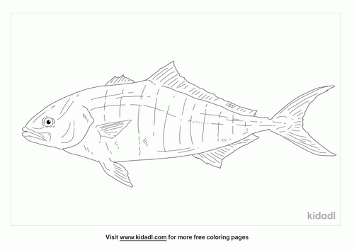 banded-rudderfish-coloring-page